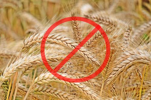 Gluten Free Diet: risks and benefits
