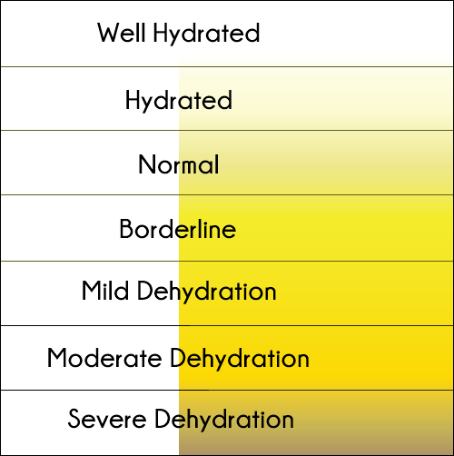 Color of urine according to your level of dehydration