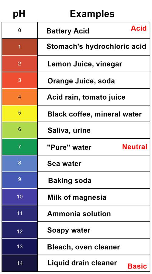 pH scale chart with examples 0 to 14