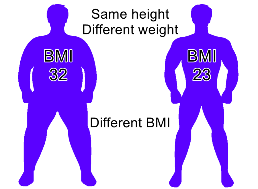 BMI of two men with same height and different weight: one is fit the other fat