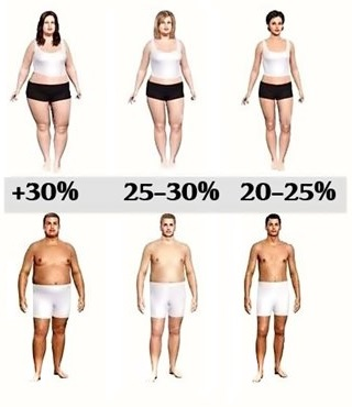 men and women with different body fat percentages, a visual comparison chart