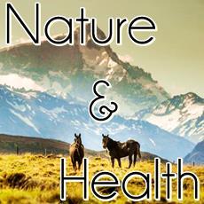nature, horses, snowcapped mountain